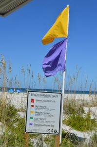 Spring Breakers, please listen when we say 'No Swimming'