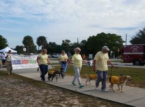 LETTER TO THE EDITOR: Suncoast Humane to hold Pet Walk for homeless animals