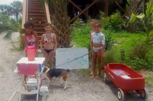 Little wildlife rescuers raise money for local animals
