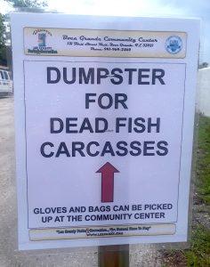 Boca Grande Dead Fish Disposal