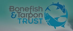 It's midnight: Do you know where your tarpon are?