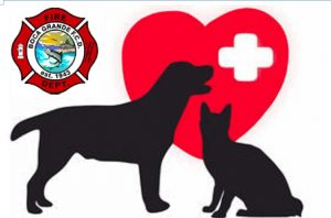 Boca Grande Fire Department to hold pet CPR class