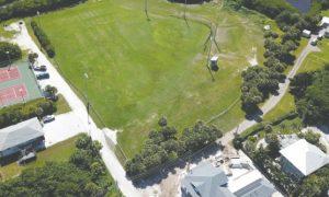 November public hearing set for dog park debate
