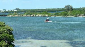 Island fire and rescue personnel respond to report of woman drowning in Gasparilla Sound