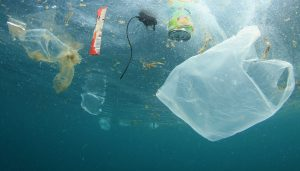 A tribute to World Oceans Day: The Plastic Problem