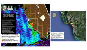 Red tide, rip current warnings issued by FEMA for coastal Lee County