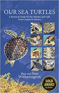 BIPS features the Witheringtons in 'Our Sea Turtles':  Part IV of their lecture series